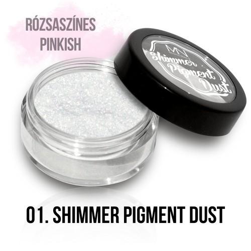 Polvere Pigmentato Shimmer  - 01 - 2g