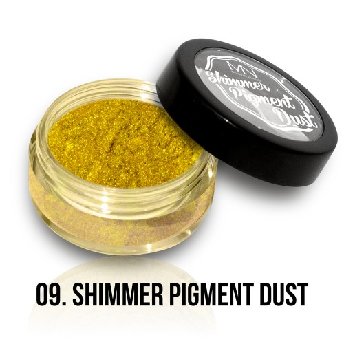 Polvere Pigmentato Shimmer - 09 - 2g