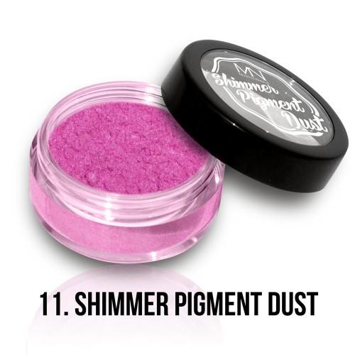 Polvere Pigmentato Shimmer - 11 - 2g