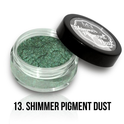 Polvere Pigmentato Shimmer - 13 - 2g
